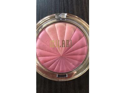 Milani Color Harmony Blush Palette, Pink Play, 0.3 oz - Image 3