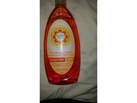 Signature Home Dishwashing Liquid & Antibacterial Hand Soap, Orange Scent, 24 fl oz/709 mL - Image 3