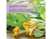 Now Essential Oils, Helichrysum Oil Blend, 1-Ounce - Image 9