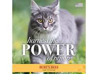 Burt's Bees for Pets Tearless Kitten Shampoo with Buttermilk - Image 10