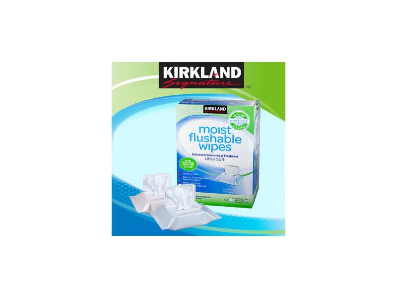 Kirkland Signature™ Moist Flushable Wipes