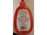 Rejoice International Pumpkin Spice Hand Soap, 16.9 fl oz - Image 3