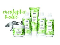 Shampoo, Eucalyptus and Aloe by H2O+ Beauty, Cleanses and Invigorates, 12.2 Ounce - Image 8