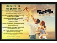 Mo' Maggie Magnesium Lotion, 8 fl. oz. - Image 7