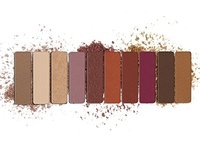 wet n wild Color Icon Eyeshadow 10 Pan Palette, Rose in the Air, 0.3 Ounce - Image 3