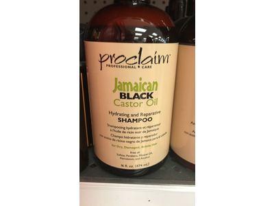 Jamaican Black Castor Oil Shampoo - Image 3