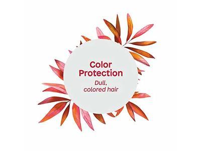 Attitude Natural Color Protection Shampoo, Super Leaves, 16 fl oz - Image 7