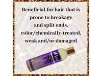 The Mane Choice Ancient Egyptian Anti-Breakage & Repair Antidote Oil, 8 oz - Image 5