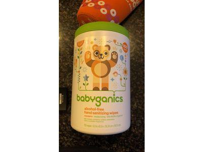 Babyganics Alcohol-Free Hand Sanitizing Wipes Canister Mandarin, 100ct - Image 3