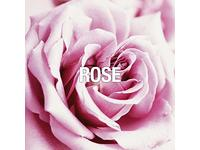 Ed Hardy Perfume for Women, 3.4 fl. oz. - Image 9
