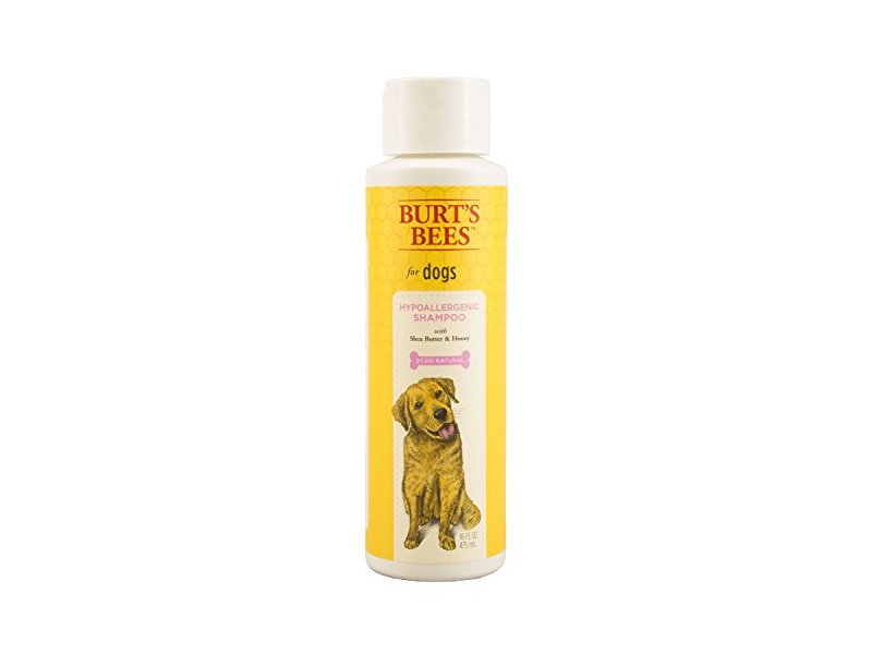 Burts Bee Hypoallergenic Shampoo, 16-Ounce