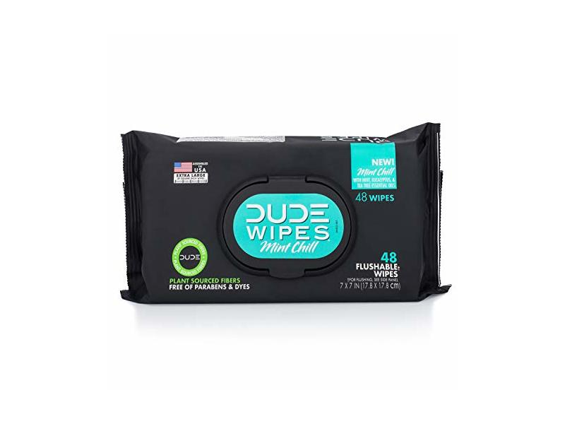 Dude Products Flushable Wipes Dispense, White Mint, 48 Count