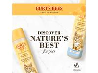 Burt's Bees for Pets Tearless Kitten Shampoo with Buttermilk - Image 9
