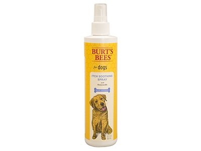 Burt's Bees Itch Soothing Spray for Dogs, 10 fl oz