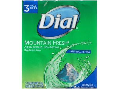 Dial Antibacterial Deodorant Soap Mountain Fresh