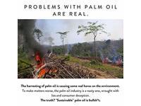 Peet Bros. Palm Oil-Free Olive Oil Bar Soap, Unscented, 5oz - Image 5