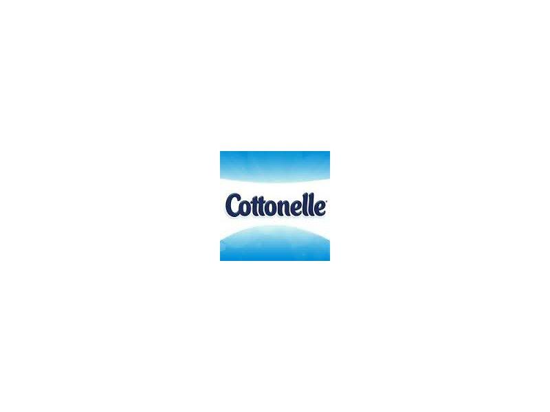 Cottonelle Freshcare Flushable Cleansing Cloths Pouch, 42 Count