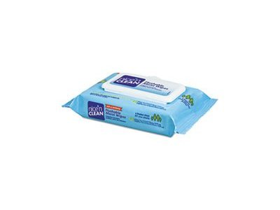 Nice 'N Clean Flushable Moist Wipes, 42 count - Image 1