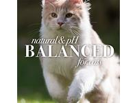 Burt's Bees for Pets Tearless Kitten Shampoo with Buttermilk - Image 7