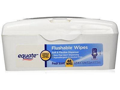 Equate Flushable Wipes in Soft Flexible Dispenser, Fresh Scent, 48 count - Image 1