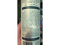 The Seaweed Bath Co. Balancing Eucalyptus and Peppermint Argan Shampoo, 12 oz - Image 7