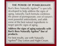 Burt's Bees Naturally Ageless Smoothing Eye Creme - Image 4